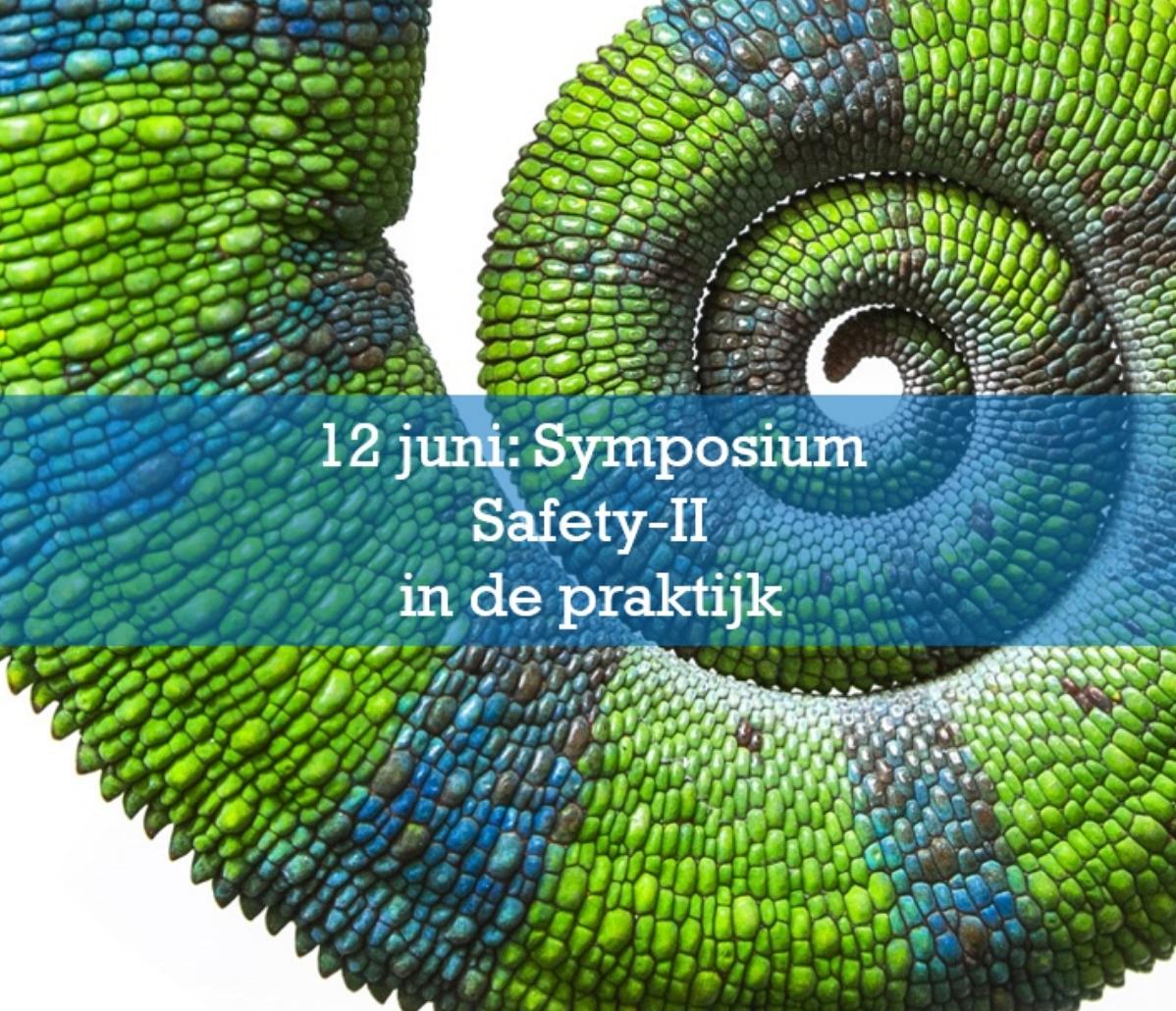 Safety-II in de praktijk